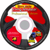 Professional Driving Simulator CD
